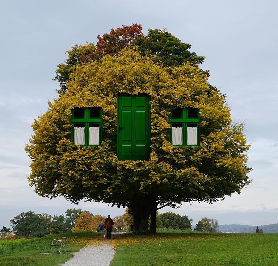 Nature Home Digital Art