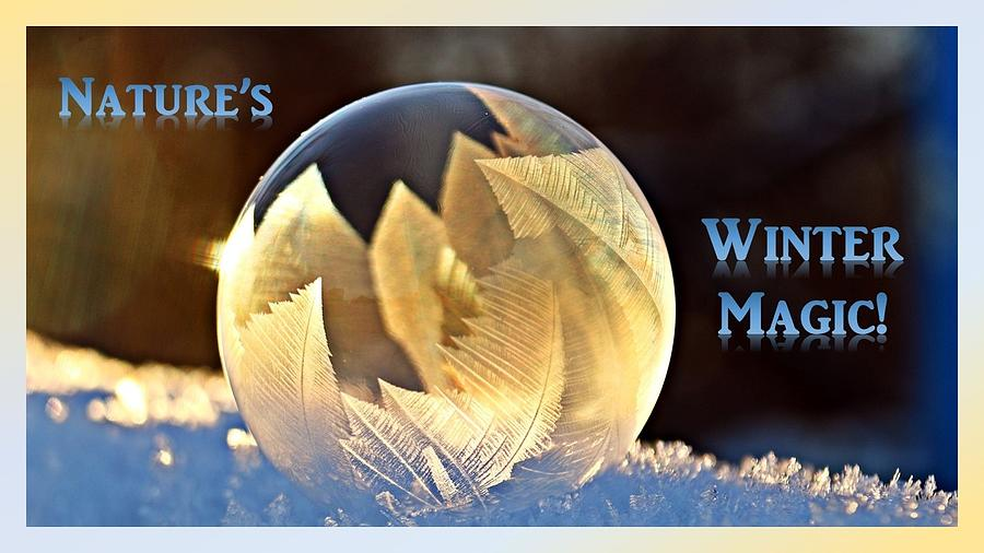 Winter Photograph - Natures Winter Magic  by Nancy Ayanna Wyatt