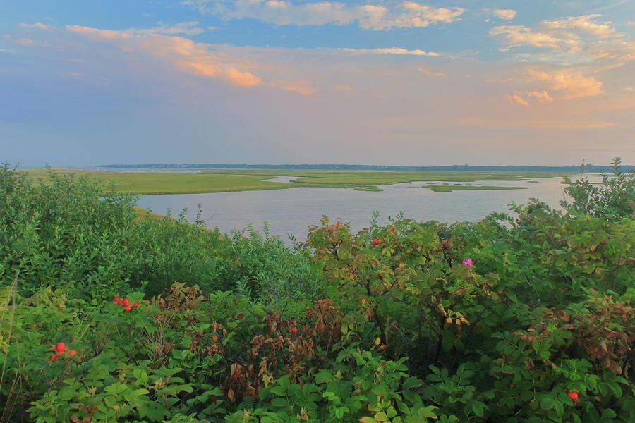 Nauset Marsh From Coast Guard Beach Photograph