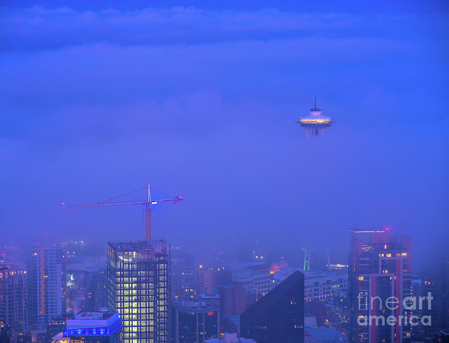 Needle And The Fog Photograph