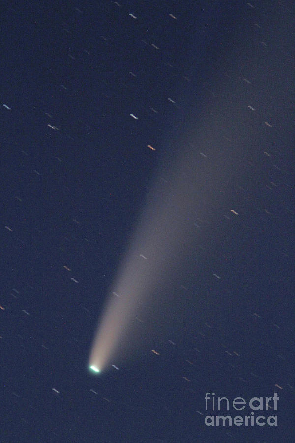 Comet Photograph - Neowise Comet by Gary Wing
