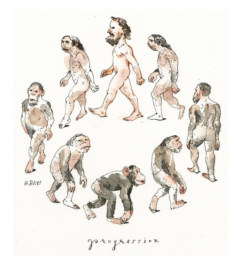 New Breakthrough in Understanding Darwins Theory  Painting by Barry Blitt