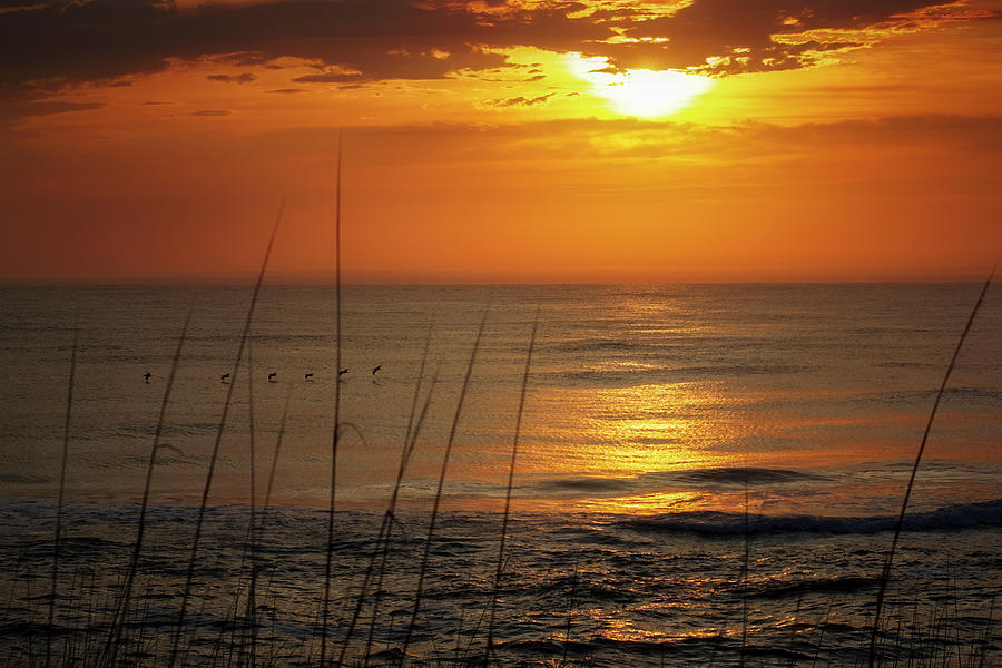 New Day Obx Photograph