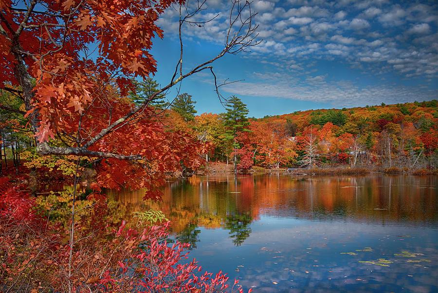 New England Foliage - Alton, Nh Photograph