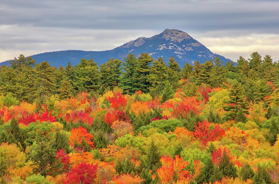 New Hampshire White Mountains Fall Foliage at Mount Chocorua by Juergen Roth