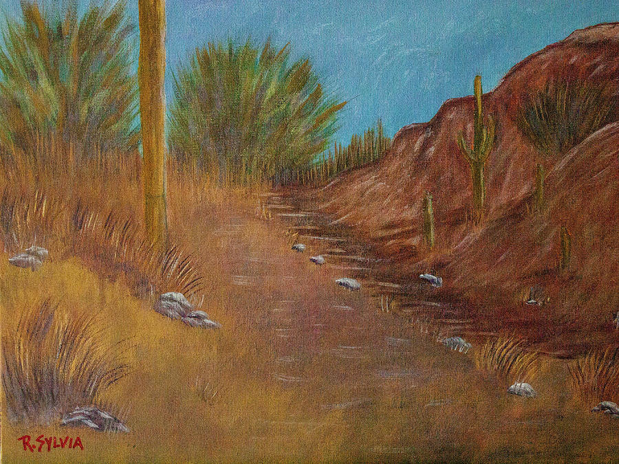 New Mexico Trail by Randy Sylvia