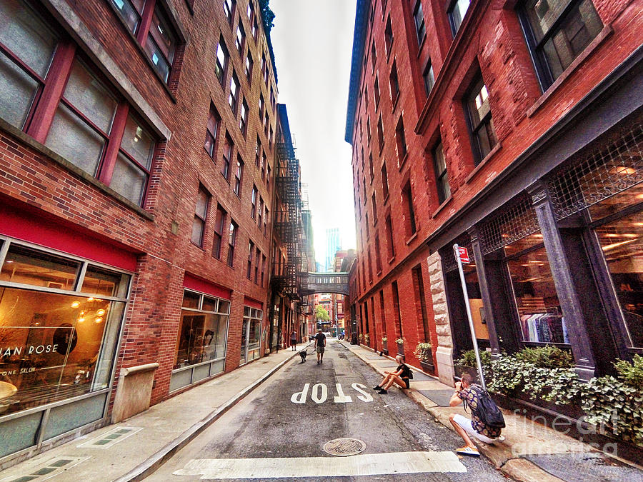 New York Cityscape Staple Street Tribeca Skybridge Photograph