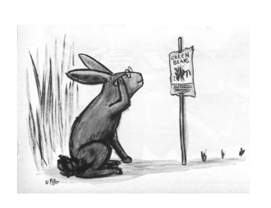 New Yorker July 18, 1964 Drawing by Warren Miller