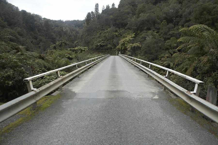 New Zealand, King Country, Empty highway in woodland Photograph by Heidi Coppock-Beard