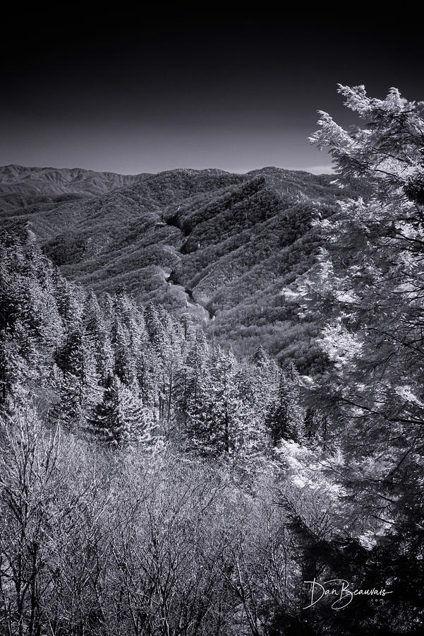 Newfound Gap 1085 Photograph