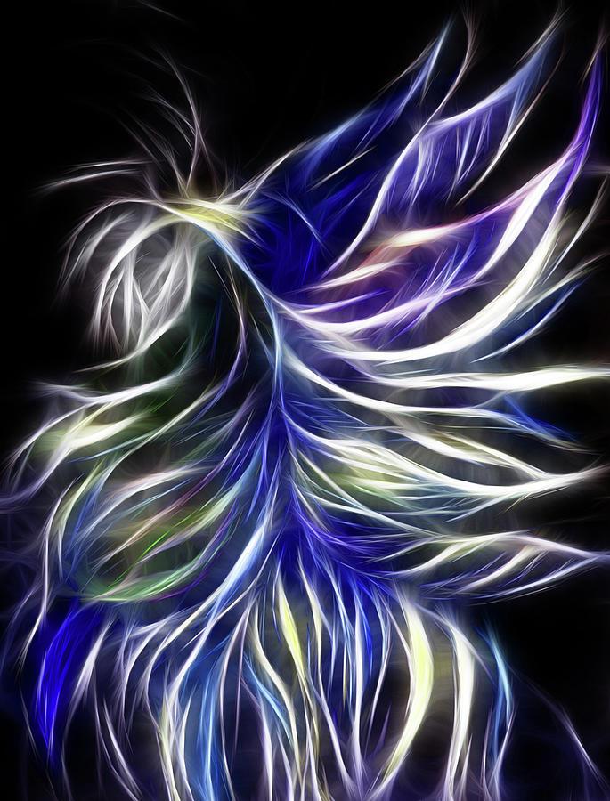 Night Fly Digital by Melinda Firestone-White