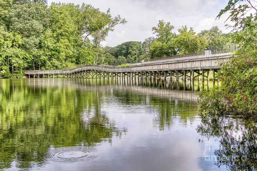 Noland Trail Foot Bridge Photograph