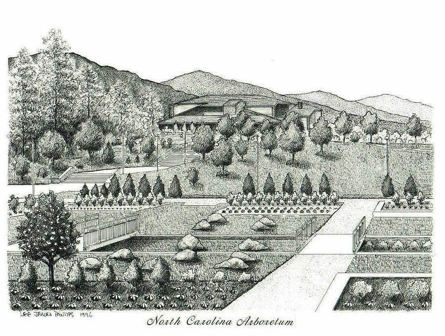North Carolina Arboretum Drawing - North Carolina Arboretum by Lee Pantas