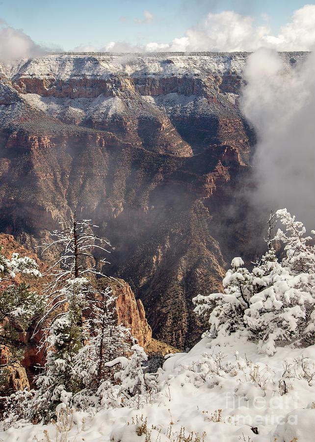 North Rim Grand Canyon Snow by Dustin K Ryan