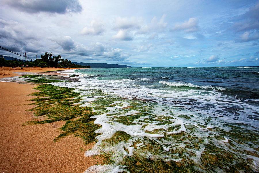 North Shore's Turtle Beach by Anthony Jones