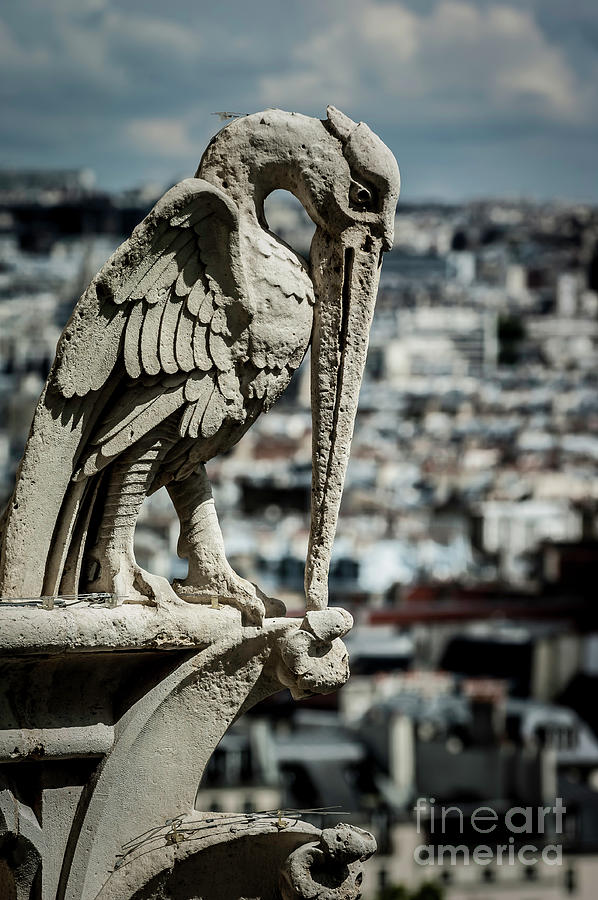 Paris Photograph - Notre Dame Cathedral 10 by Micah May