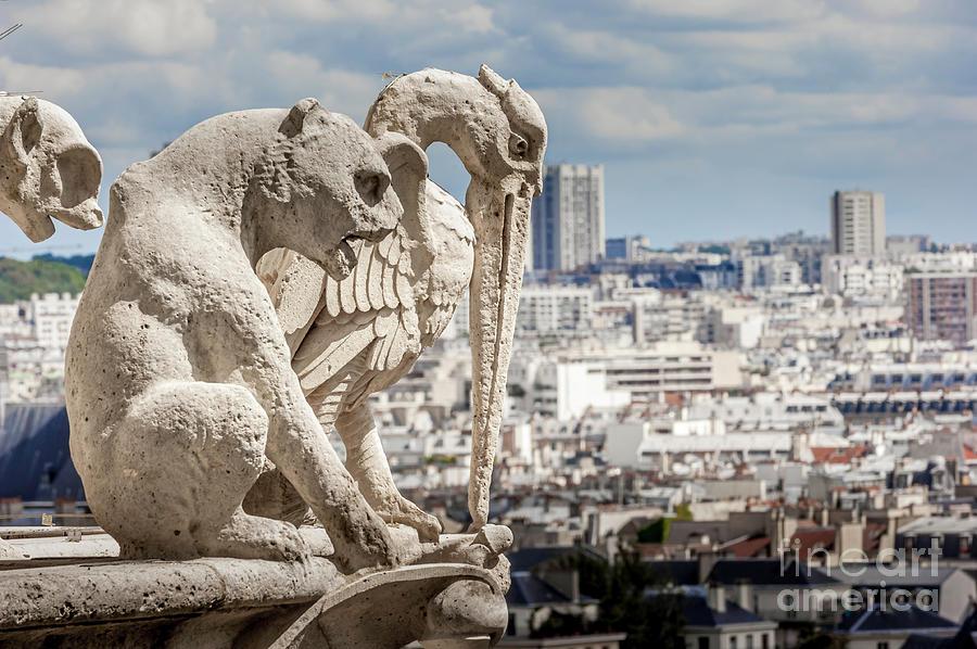 Paris Photograph - Notre Dame Cathedral 6 by Micah May