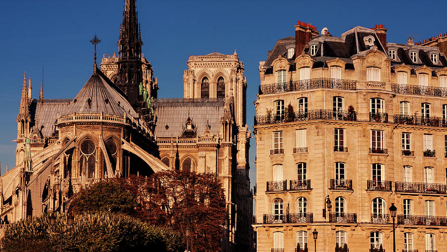 Notre Dame Photograph - Notre Dame Cathedral and Parisian Building - Paris by Barry O Carroll