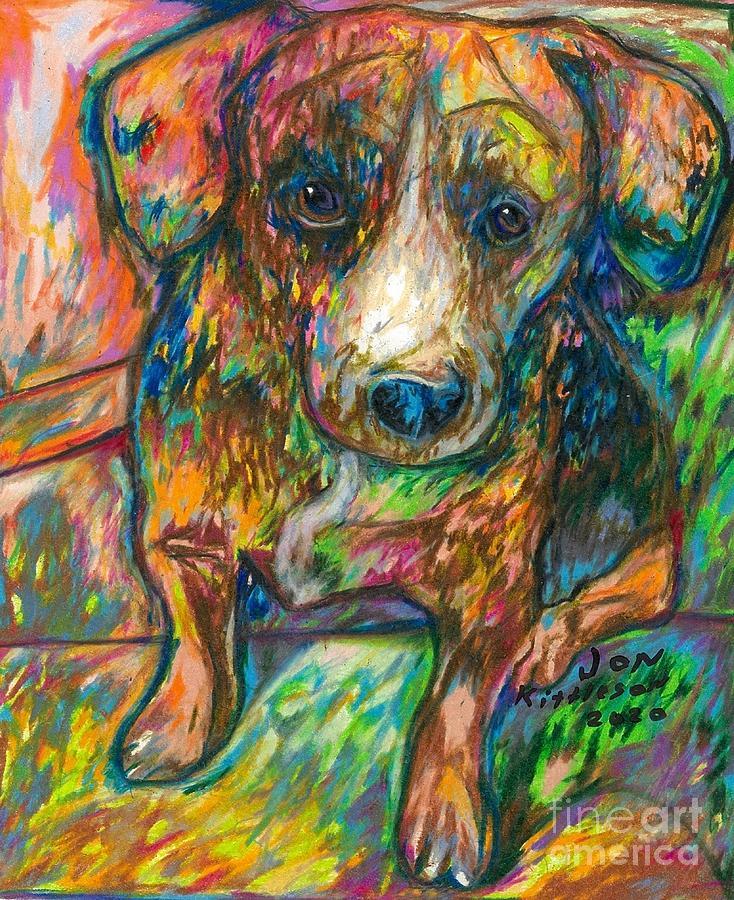 Small Dog Drawing - Nova by Jon Kittleson