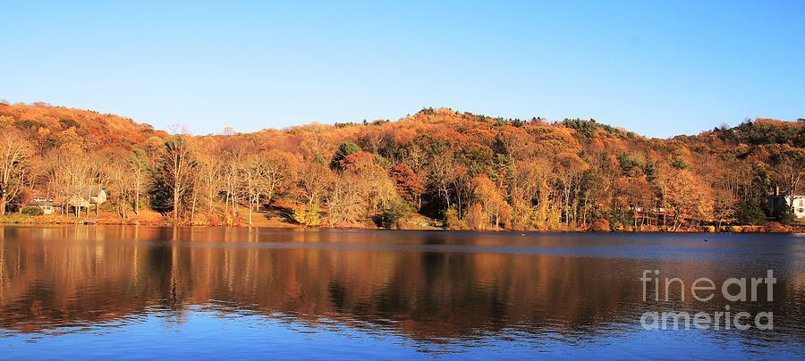 November Colors by Karen Silvestri