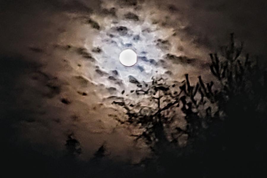 November Gibbous Moon  by Paul Kercher