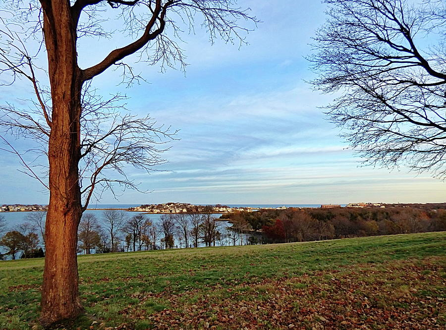 November in World's End, Hingham, MA by Lyuba Filatova