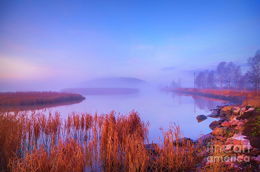 November Misty Morning 2 Photograph