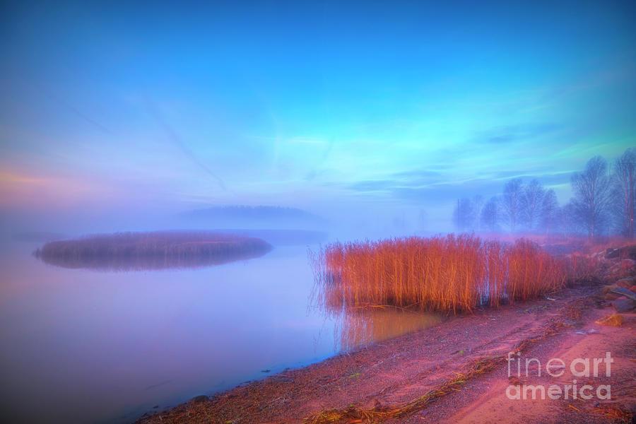 November Misty Morning 8 Photograph