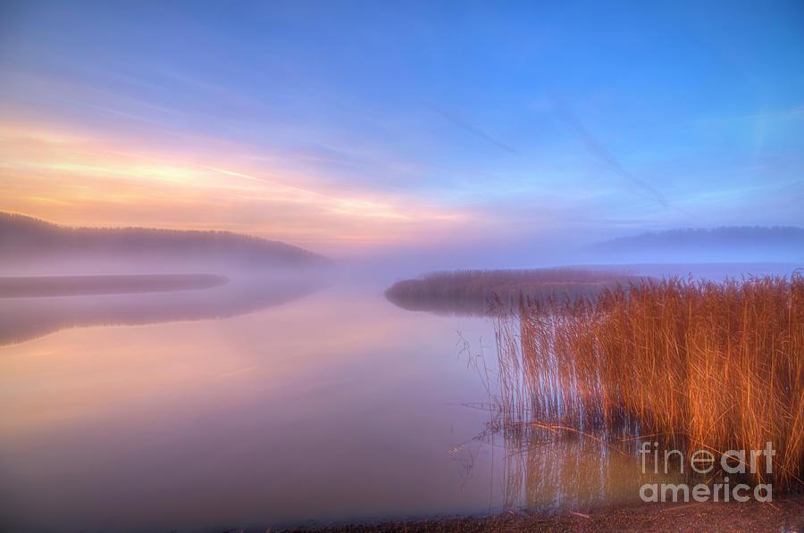November Misty Morning Photograph
