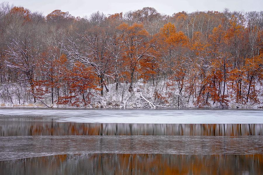 November Snow by Susan Rydberg