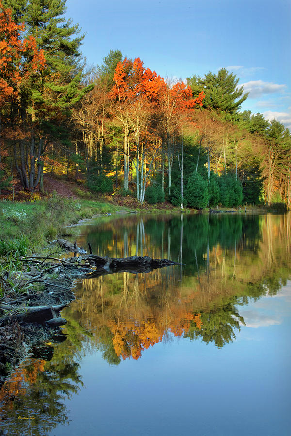 Oakley Corners State Forest by Christina Rollo