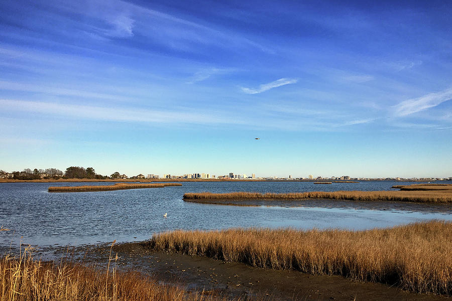 Ocean City Skyline from Assawoman Bay by Bill Swartwout Photography