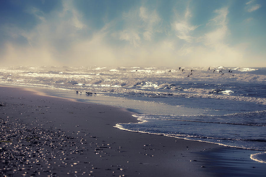 Ocean Fantasy Photograph