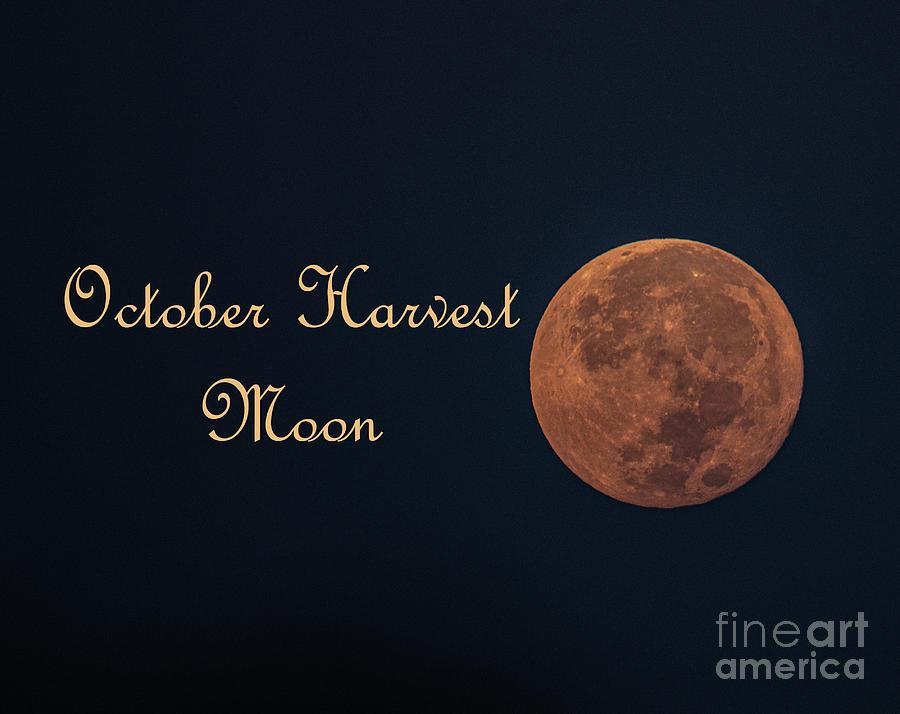 October Harvest Moon - 2020 Photograph