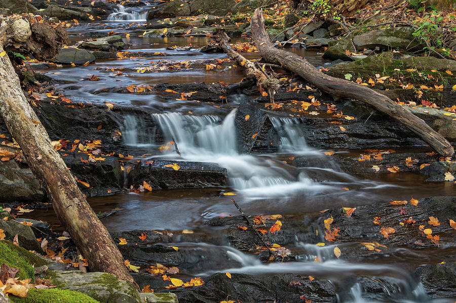 Hudson Valley Photograph - October Morning At Falling Waters by Jeff Severson