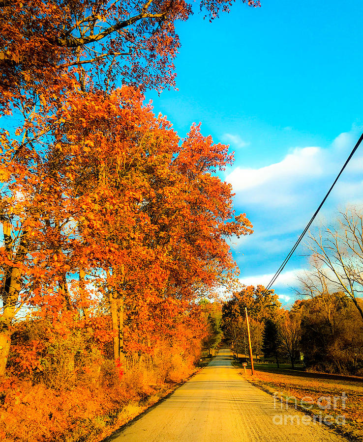 October Road Photograph