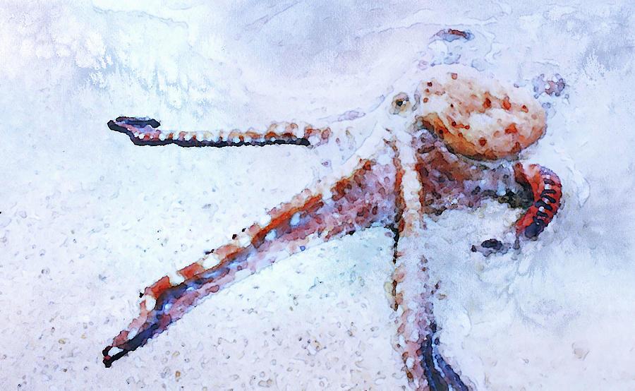 Octopus in Watercolor by Susan Maxwell Schmidt
