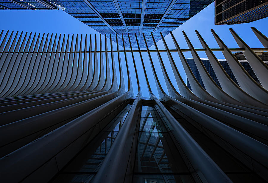 Oculus Center And High Rises Nyc Photograph