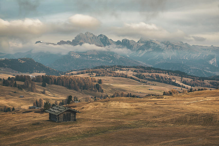 Odle Mountains - Alpe Di Siusi Photograph