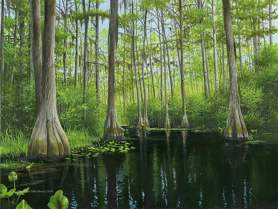 Okekenokee Swamp by Mike Brown