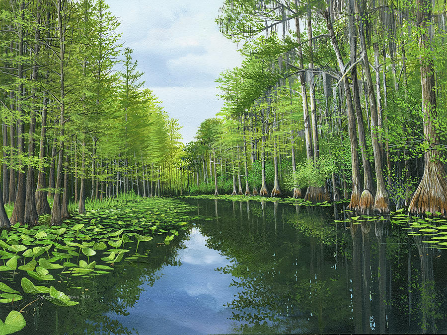 Swamp Painting - Okekenokee Swamp Suwannee River by Mike Brown