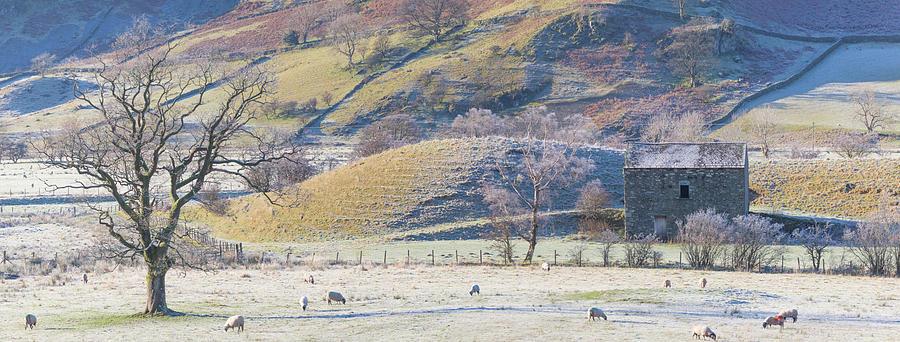 Old barn, winter time, Lake District - panorama by Anita Nicholson