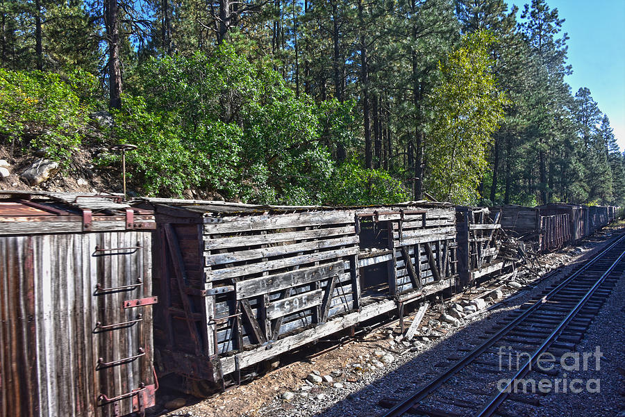 Old Box Cars in Colorado by Catherine Sherman