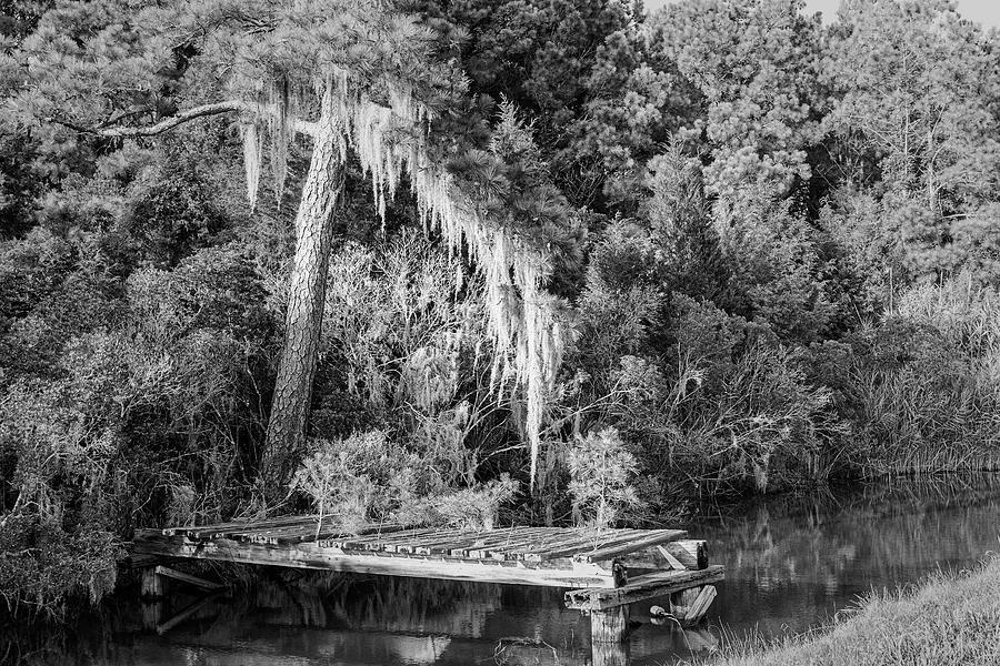 Old Dock And Spaish Moss - Hobucken North Carolina Photograph