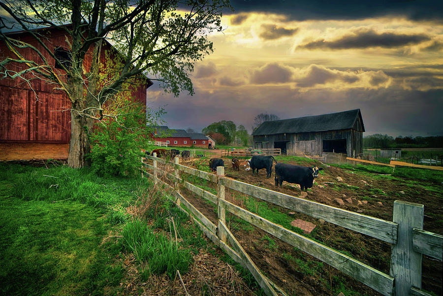 Old Farm After The Storm Photograph
