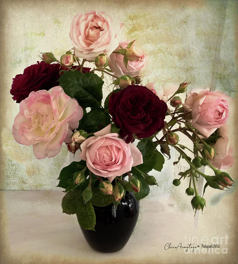 Old fashioned roses in a vase by Chris Armytage