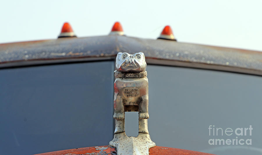 Old Mack Truck Hood Ornament  8356 Photograph