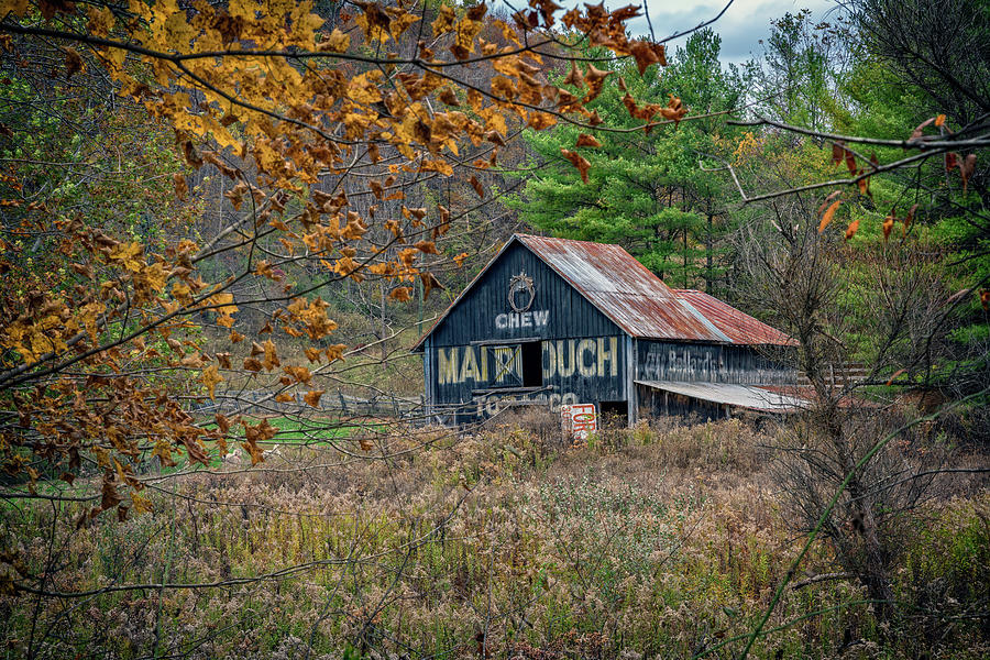 Old Mail Pouch Tobacco Barn by Rick Berk