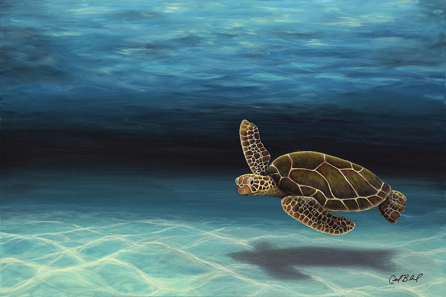 Sea Turtle Painting - Old Man of the Sea by Carolyn Bland