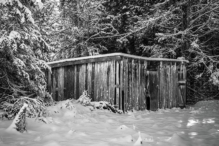 Old Man Winter by David Heilman